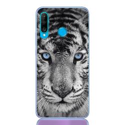tiger blue eye